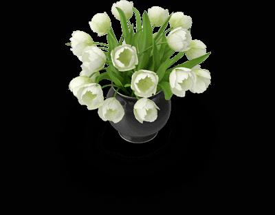 רפואה משלימה פרחים